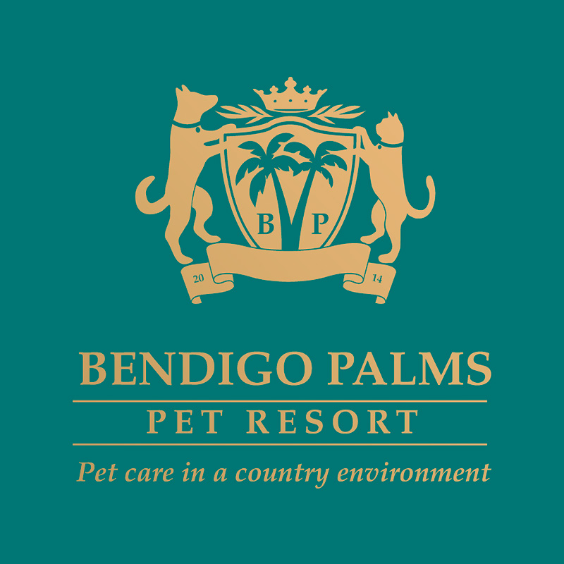 Logotipo Bendigo Palms